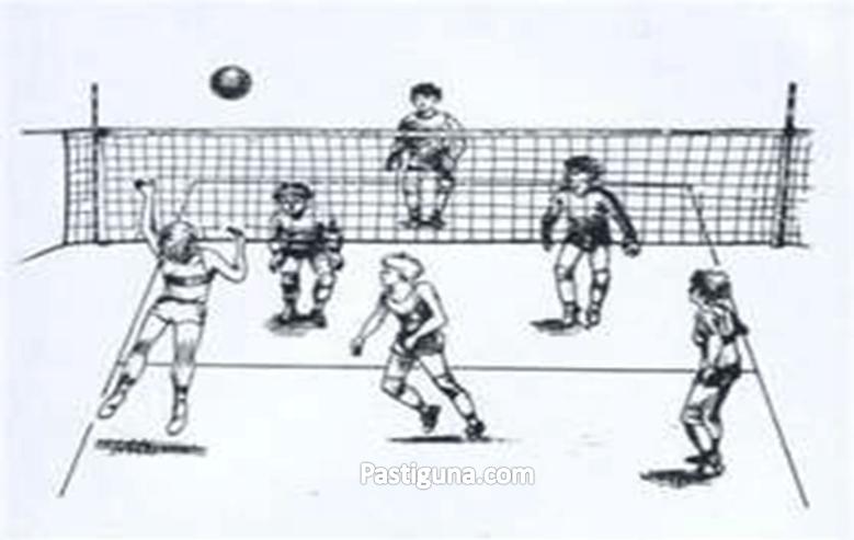 sejarah permainan bola voli mini