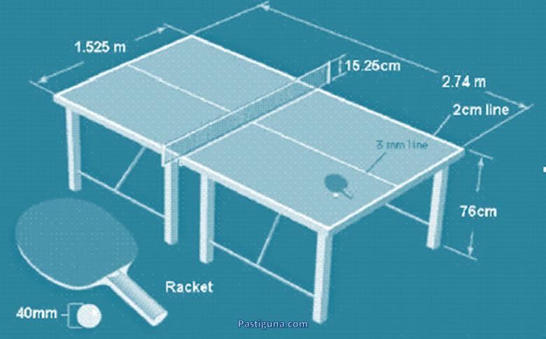 Ukuran Lapangan Tenis Meja Lengkap Dengan Penjelasannya