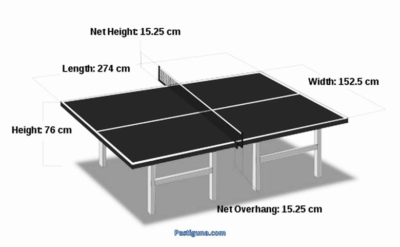 ukuran lapangan tenis meja