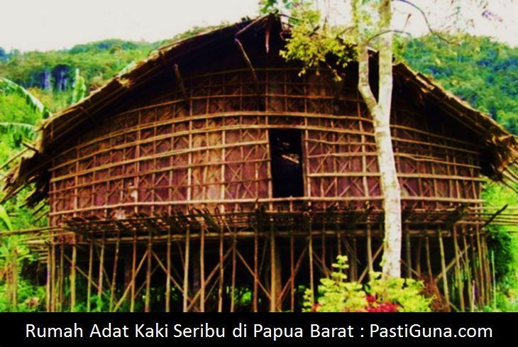 Keunikan Nama Rumah Adat Papua Beserta Gambar Dan Penjelasannya