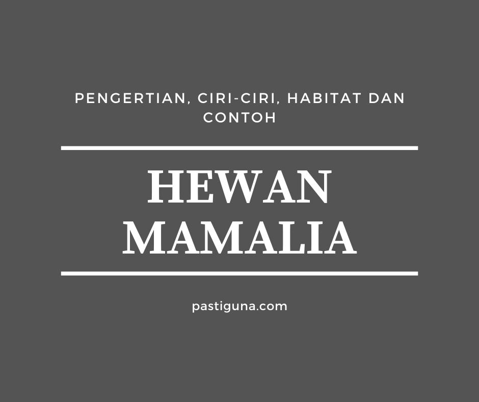 Hewan Mamalia