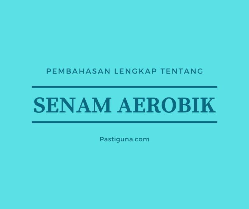 Senam Aerobik